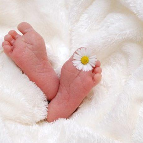 baby-718146__340